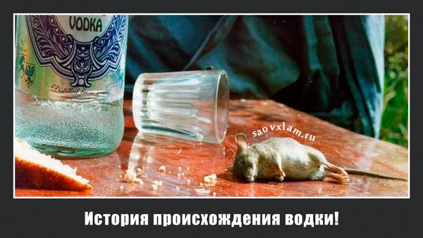 История происхождения водки