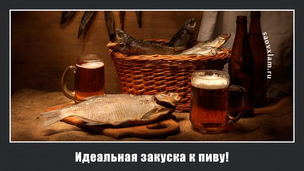 закуска под пиво